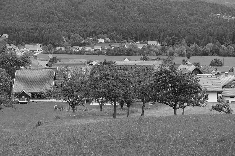 Migrantski center Bočna - Živi in delaj