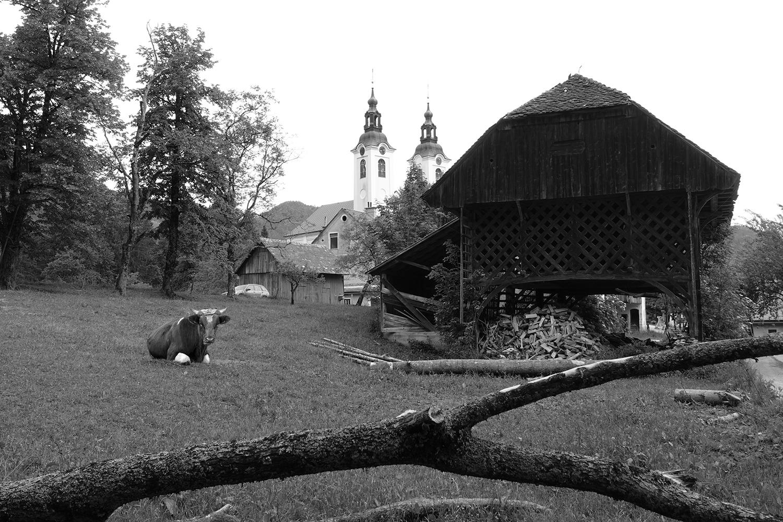 Revitalizacija kmetije v Novi Štifti