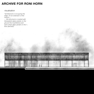 Archive for Roni Horn